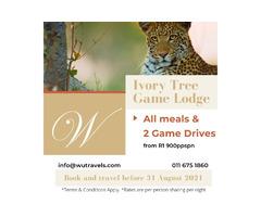 Bushveld Break to the Pilanesberg National Park at Ivory Tree Game Lodge