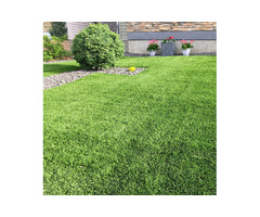 Artificial grass suppliers and installers