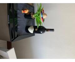 Y2K celebratory bottle of Swartland Merlot